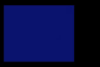 PRESENTING PARTNER  - logo 0